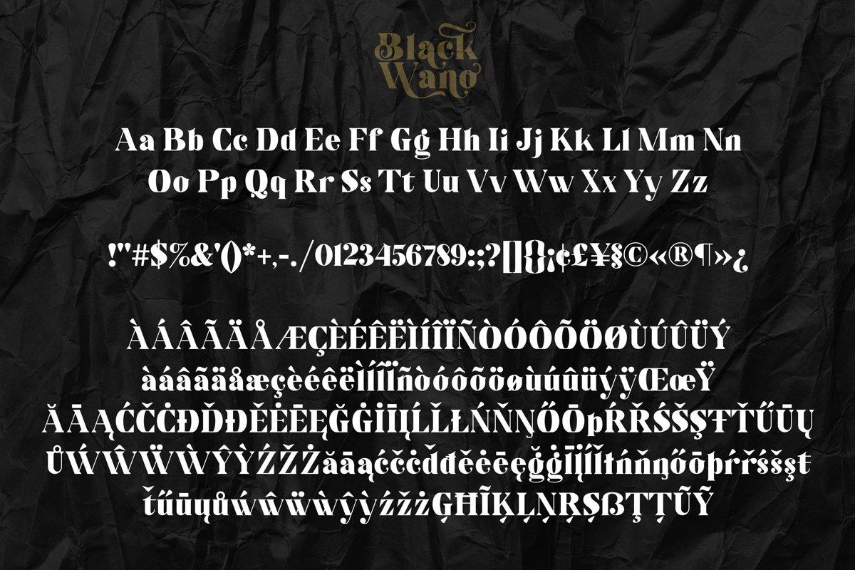 Black Wano Serif Typeface-3