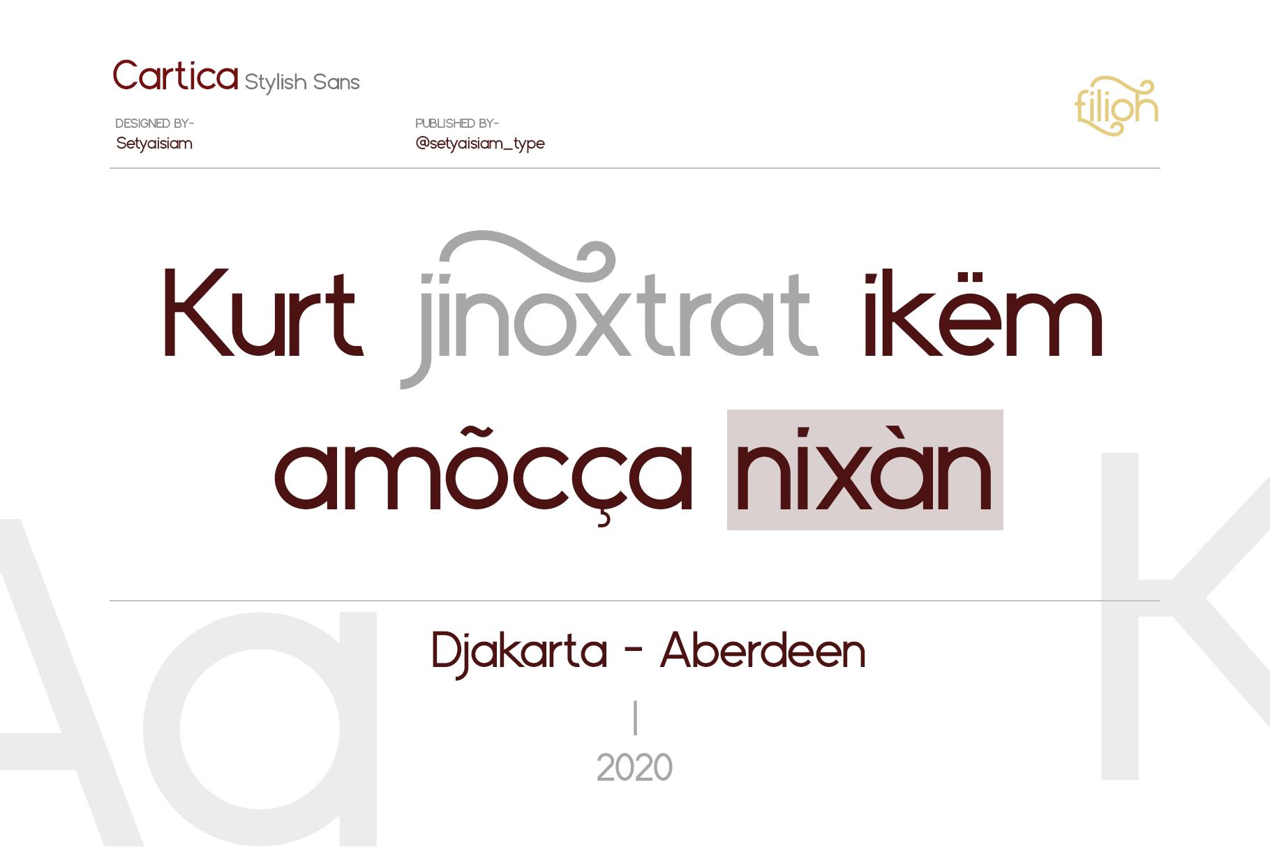 Cartica Stylish Sans Serif Font-2