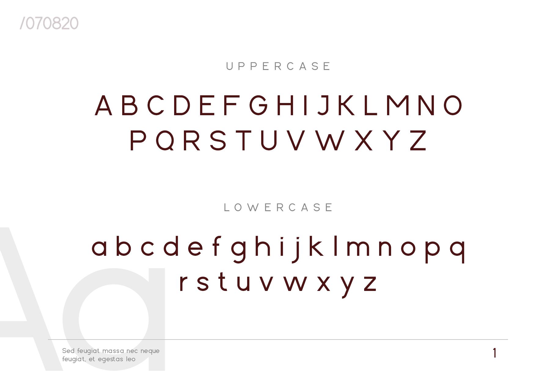 Cartica Stylish Sans Serif Font-3