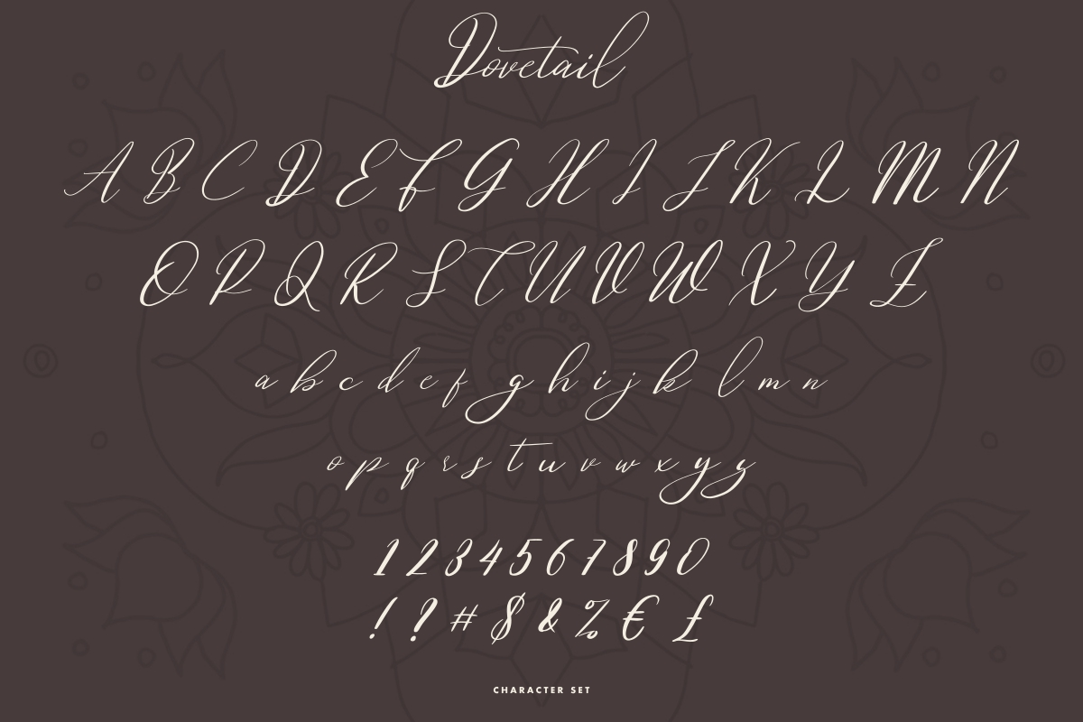 Dovetail Calligraphy Script Font-3