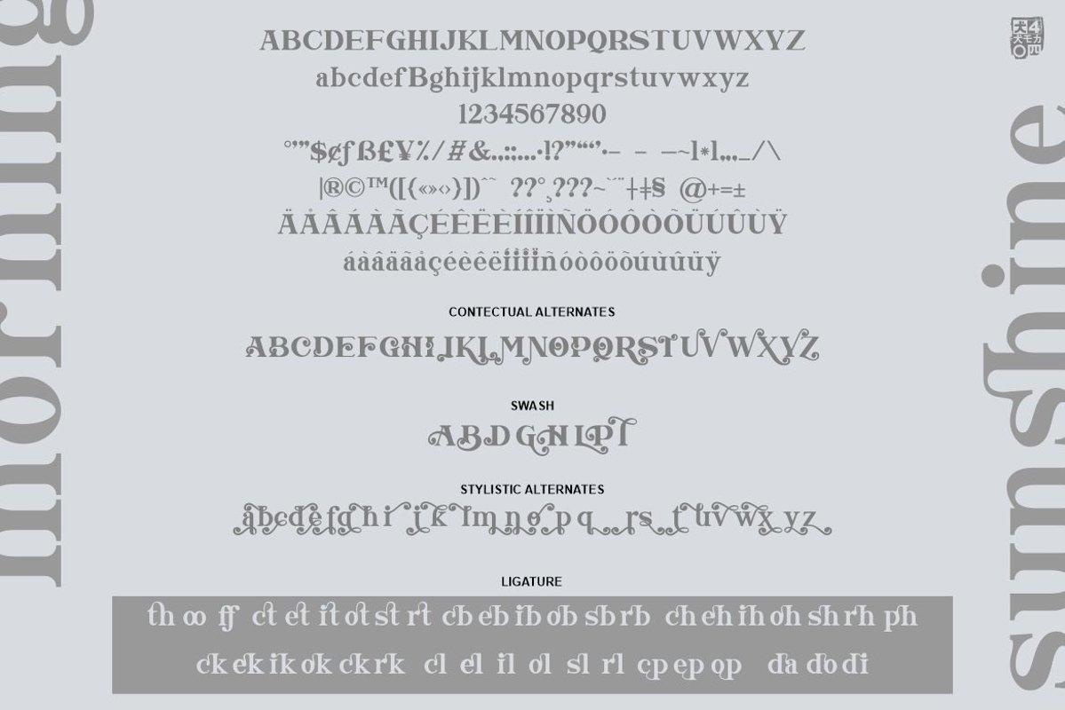 Morning Sunshine Modern Serif Typeface-3