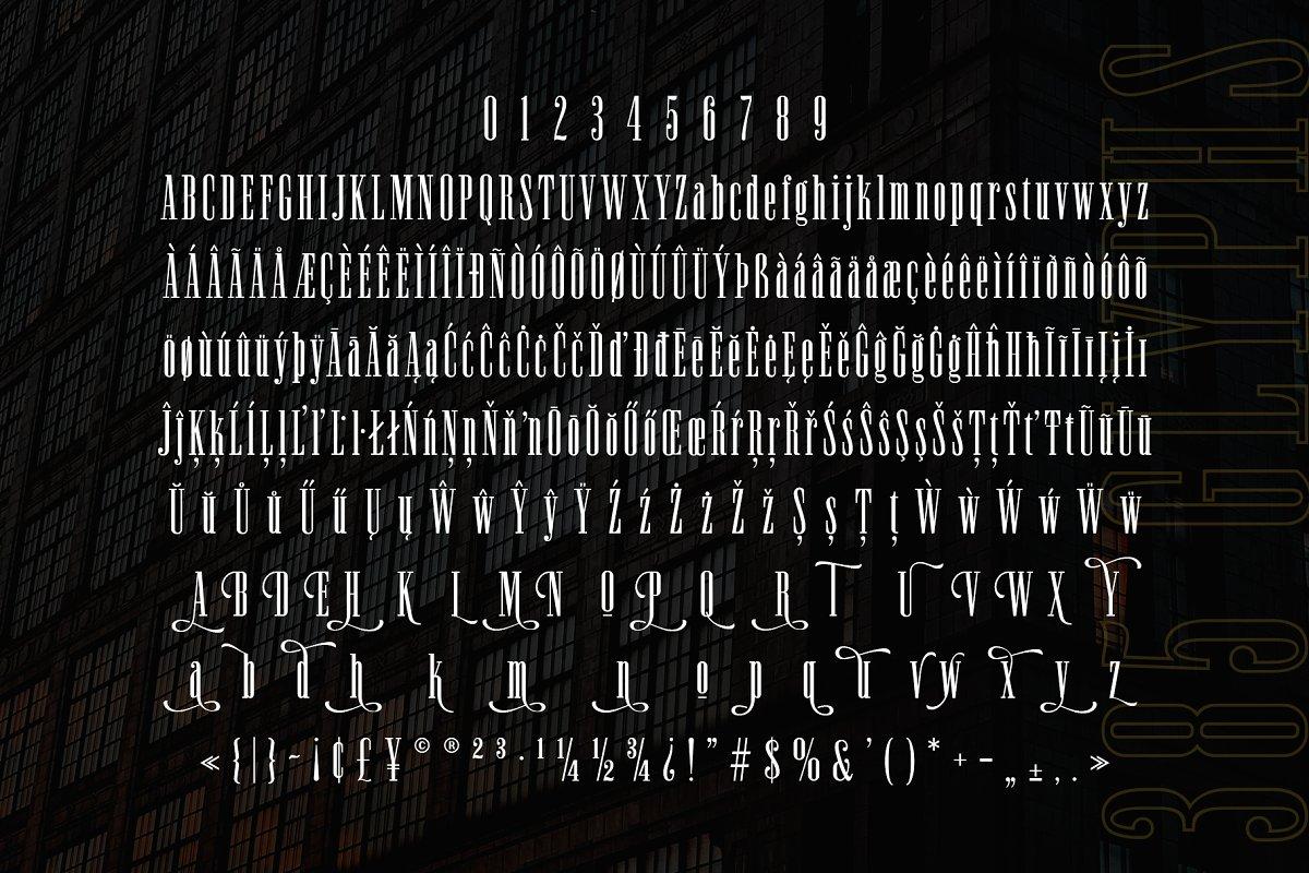 Newston Stylish Serif Font-3