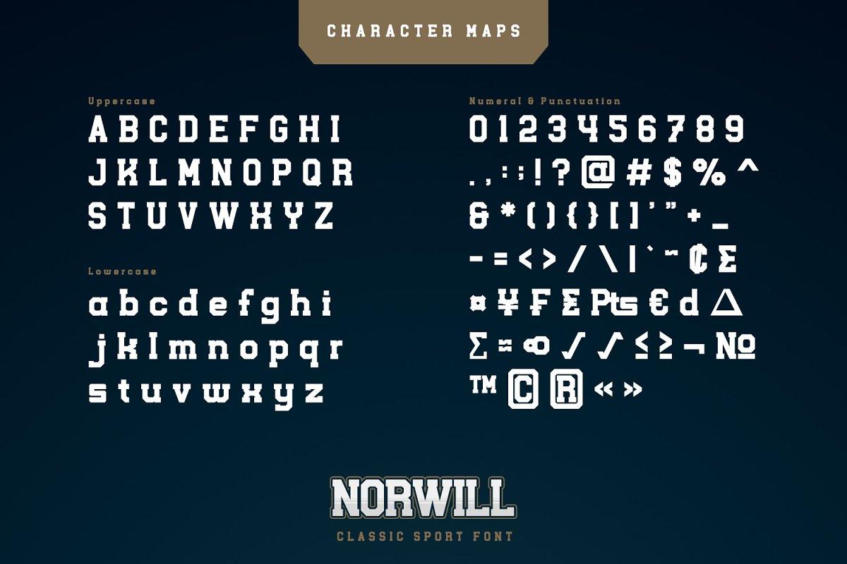 Norwill Classic Sport Display Font-3