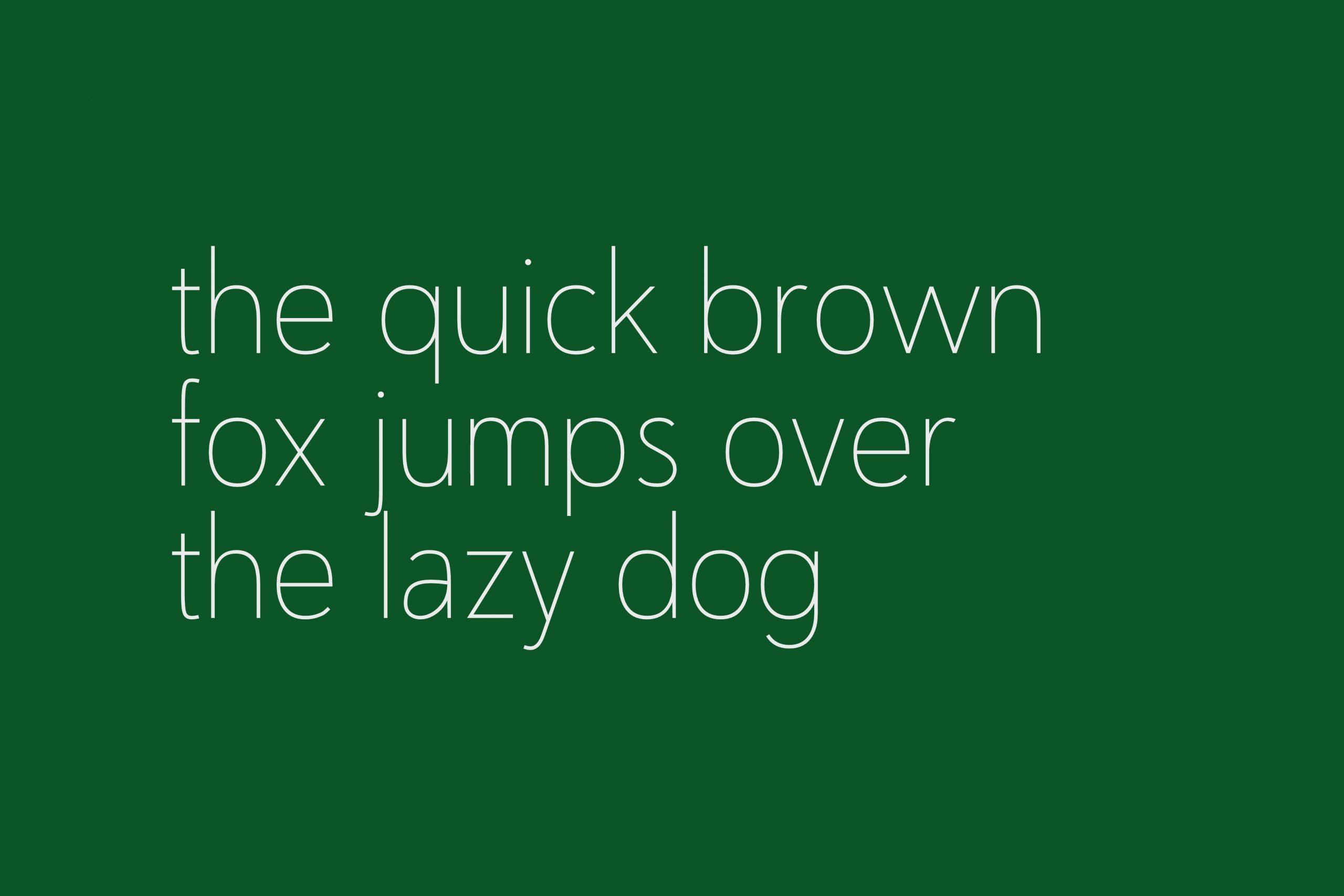 Nugo Free Sans Serif Font-5