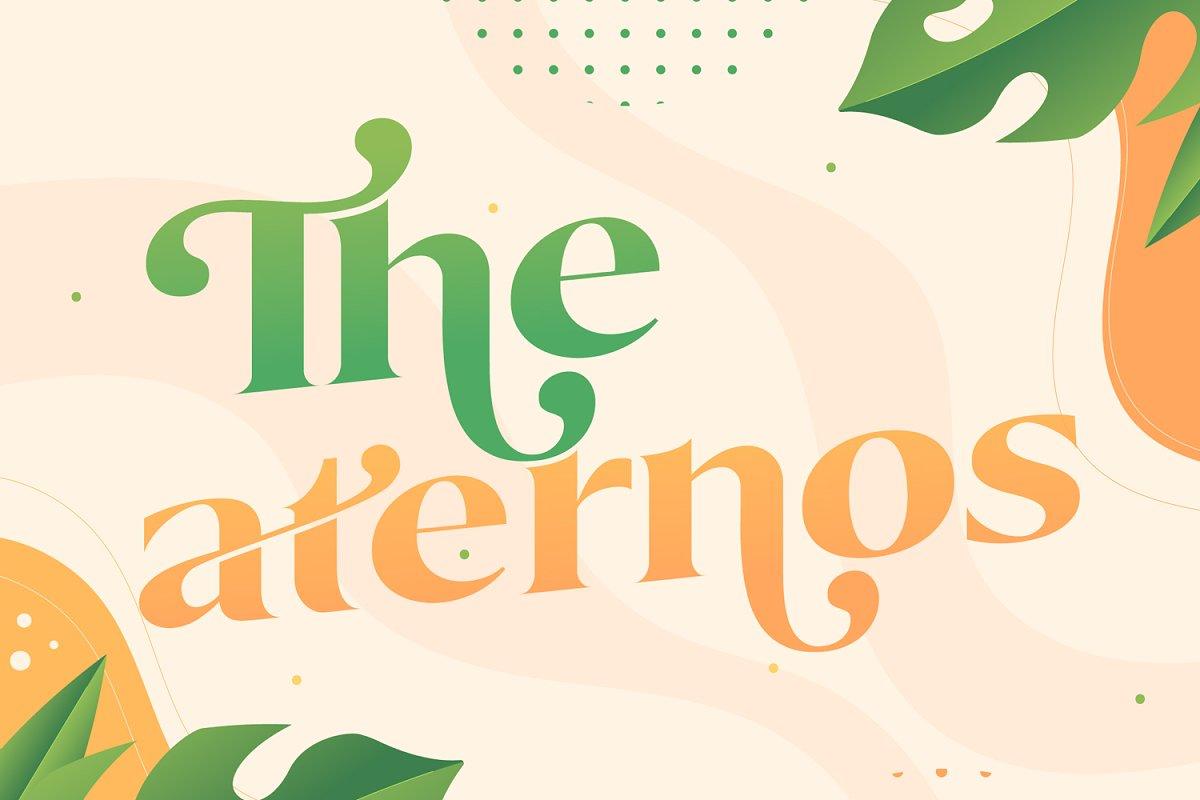 Okemo Modern Bold Serif Font-2