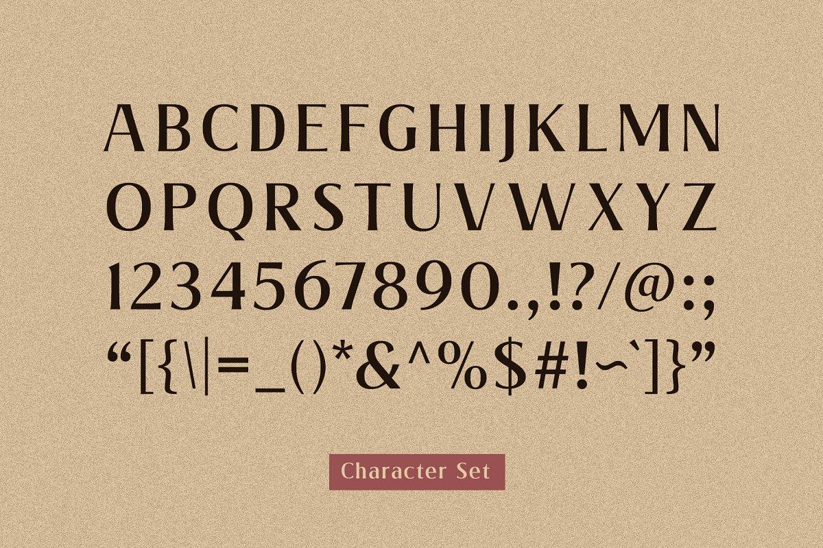Valeria Elegant Serif Font-3