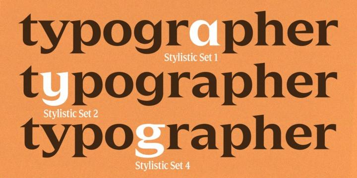 Zin Display Typeface-2