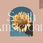 South Amsterdam Font