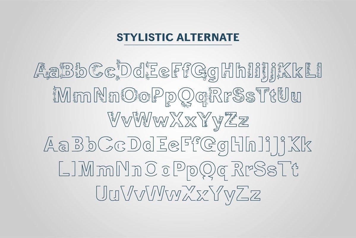 Ziclose Font-2