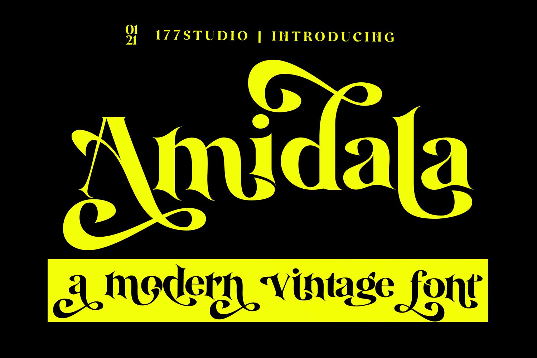 Amidala-Classy-Serif-Font-1