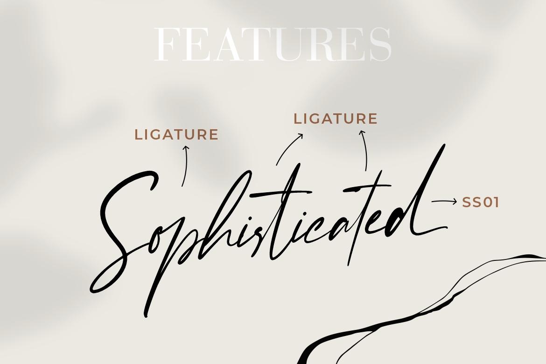 Enternity-Script-Font-2
