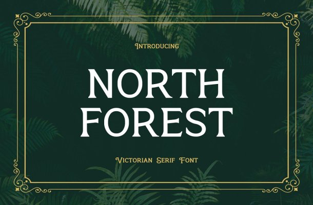 North Forest Font