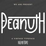 Peanuth Font