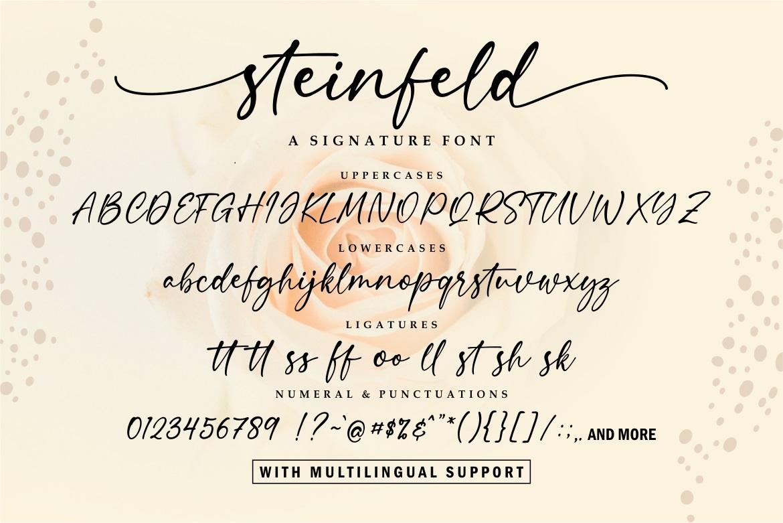 Steinfeld Font-3