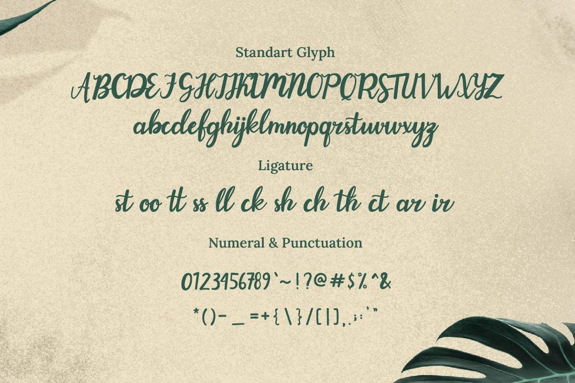 Evergarden Font-3