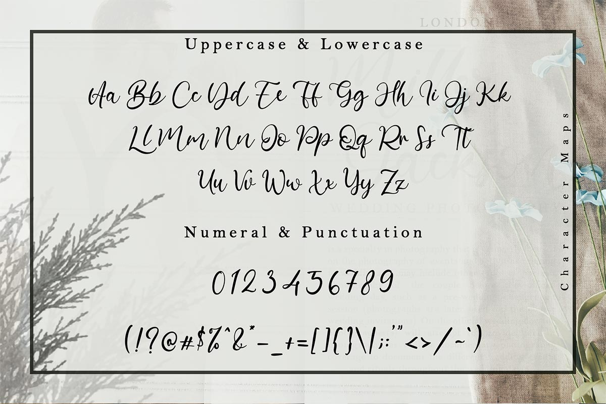 Barattiel Font-3
