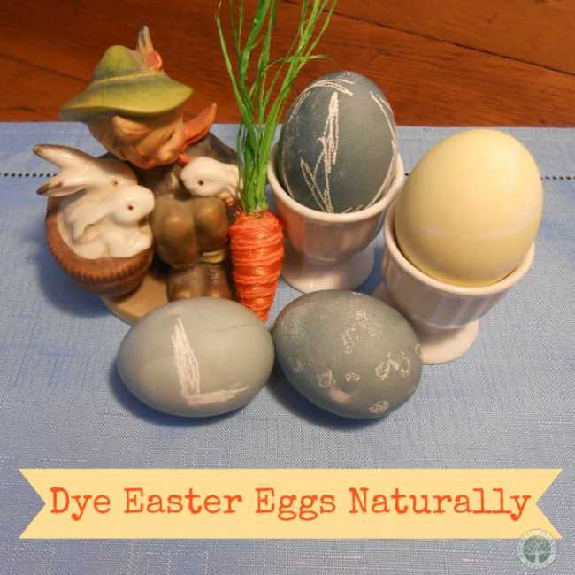 Color Easter Eggs Naturally. DagmarBleasdale.com