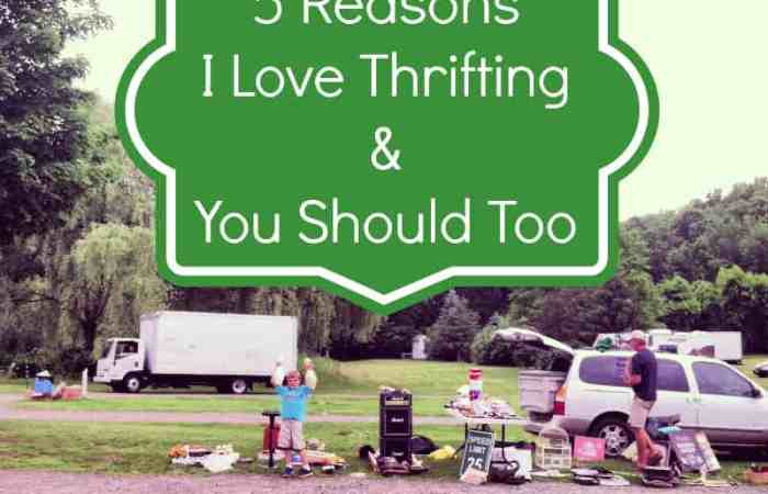 5 Reasons I Love Thrifting and You Will, Too
