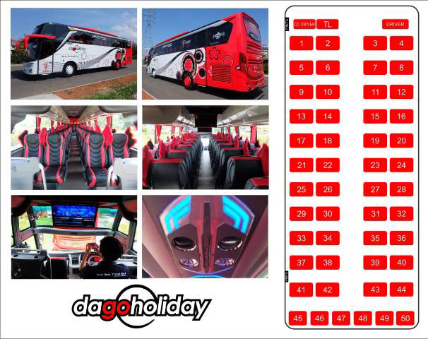 interior bus hdd/shd dago holiday 50 seat