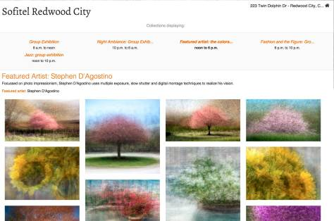 Stephen D'Agostino's photo impressionism is featured at Solitel Redwood City.