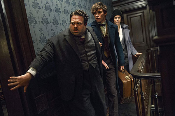 Dan Fogler on His Audition for 'Fantastic Beasts and Where to Find Them'