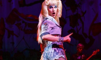 Darren Criss Hedwig Review