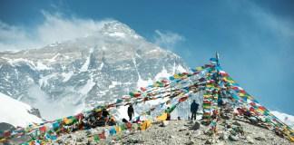 Image By Thampitakkull Jakkree/shutterstock.com