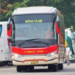 B7211PV Royal Class credit Tunggal Dara Lovers