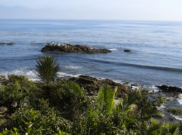 Best Picnic Spots In California The Daily Californian
