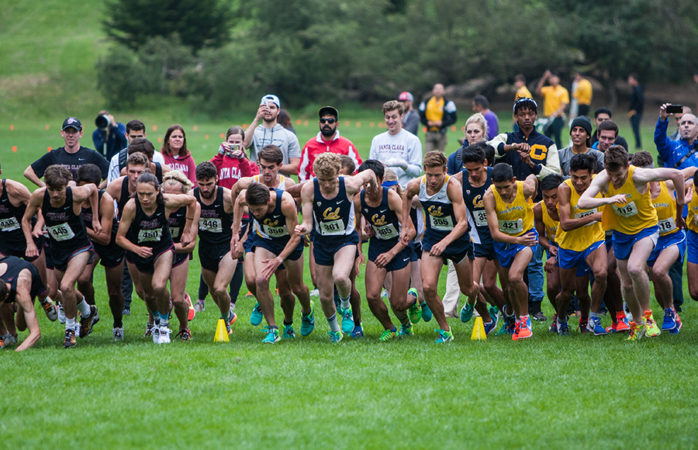 Cal cross country struggles for supremacy in Indiana, Santa Clara