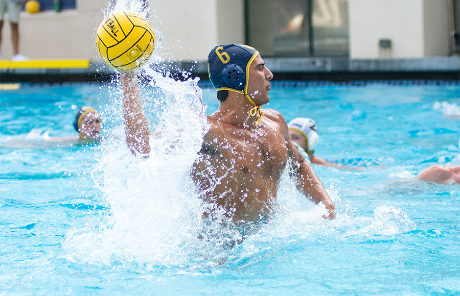ddc53839bdf No. 1 Cal men s water polo stays perfect against No. 5 Pacific