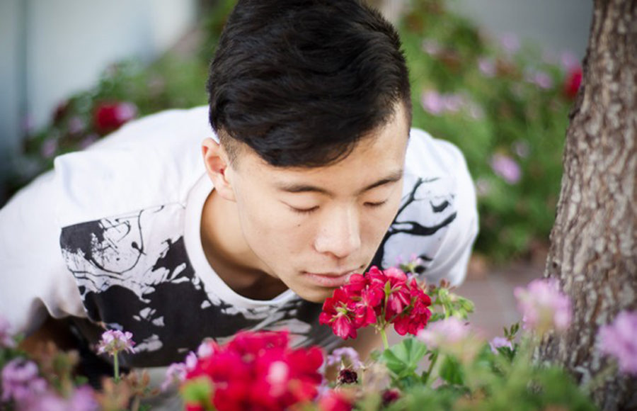 person smelling flower
