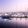 Boats rest in the waters of the marina.