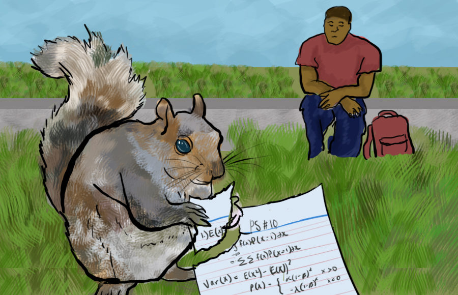 A squirrel eating someone's math notes