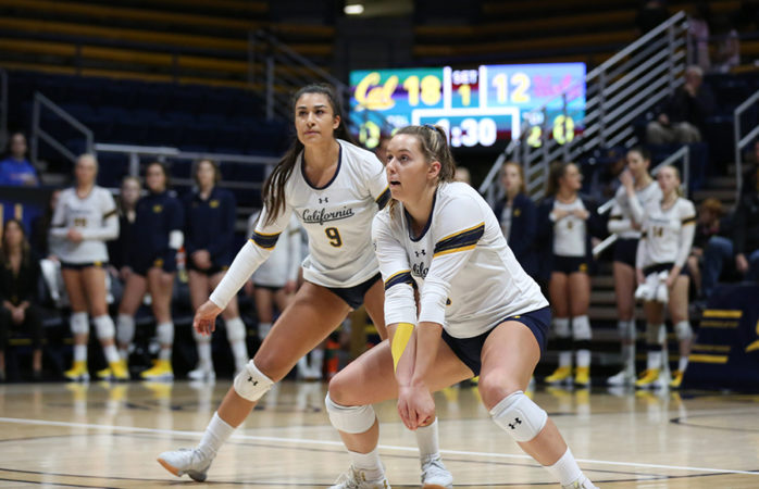 Cal volleyball returns home 8-0 for 1st time since 2011