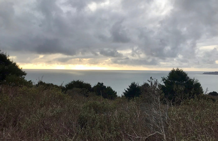 Forests, beaches, waterfalls: 24 hours on Mount Tam