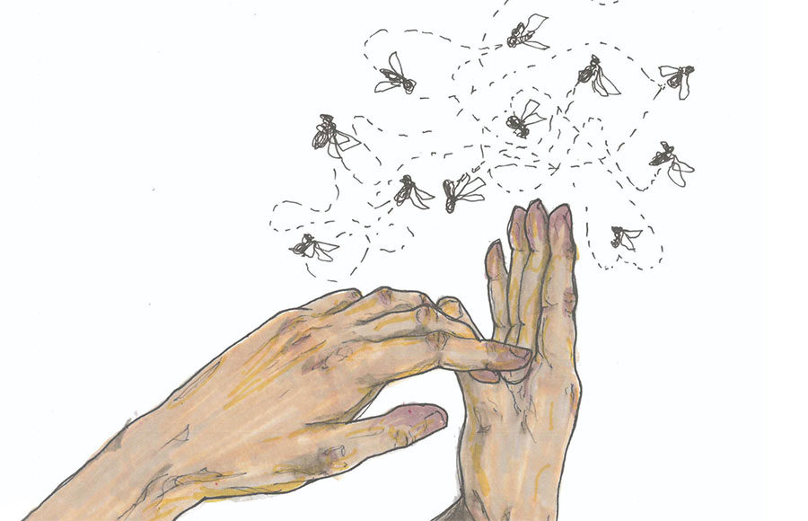 Illustration of two hands with flies