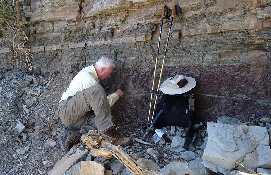 UC Berkeley researcher inspects rocks as part of study on Permian extinction