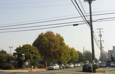 Power lines aligned down the streets of Berkeley.