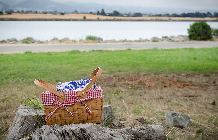 picnic basket and spread