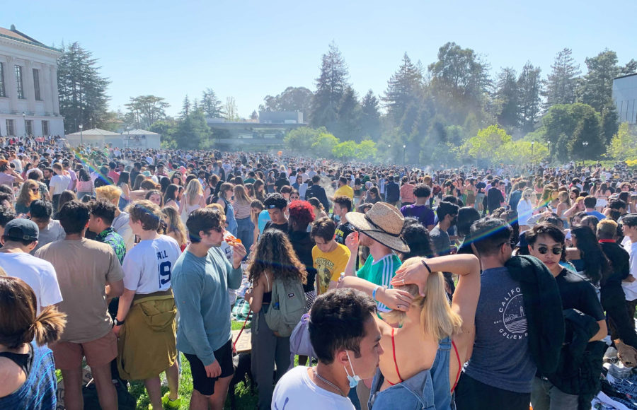Photo of 420 on Memorial Glade