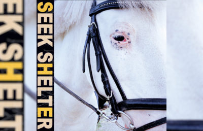 Photo of Seek Shelter album