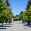 Photo of UC Berkeley's Sproul Plaza and Sather Gate