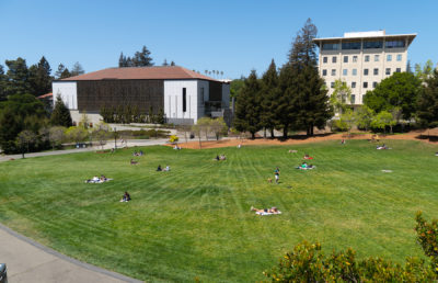 photo of campus lawn