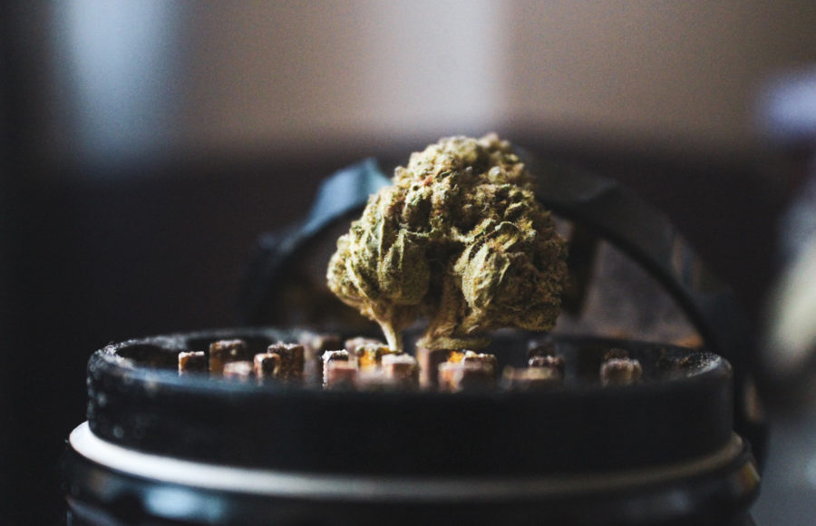 photo of weed in a grinder