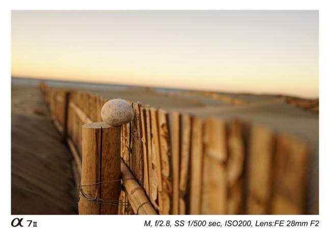 sony-fe-28mm-f2-lens-sample-images-07