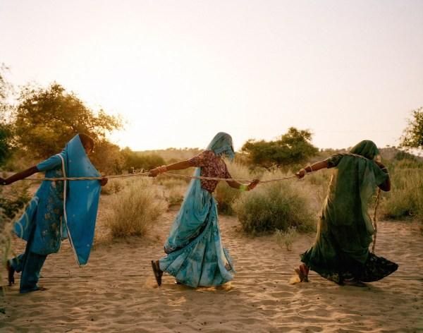 syngenta-photography-award-2015-winners-announced