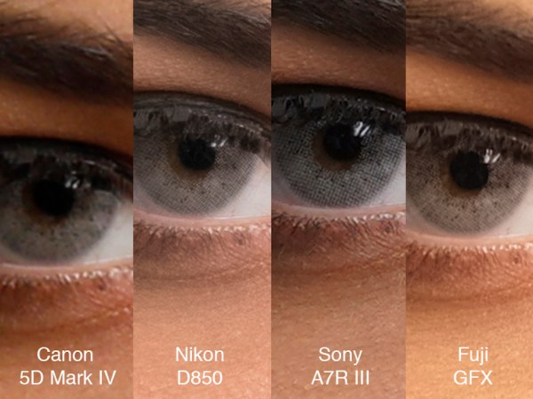 Sony A7R III vs 5D Mark IV vs Nikon D850 vs Fuji GFX 50s Comparison