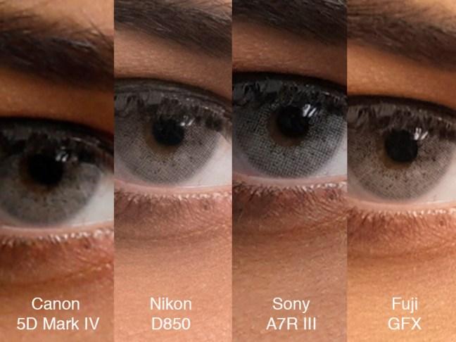 Sony A7R III vs 5D Mark IV vs Nikon D850 vs Fuji GFX 50s Comparison