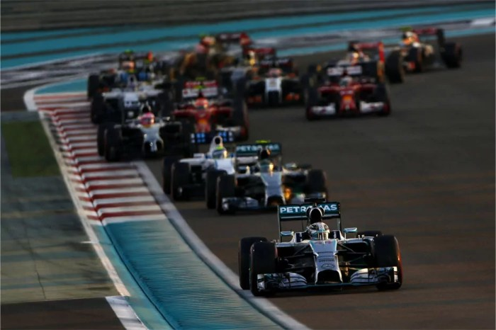 Lewis-Hamilton-2014-F1-World-Champion-Formation-Lap